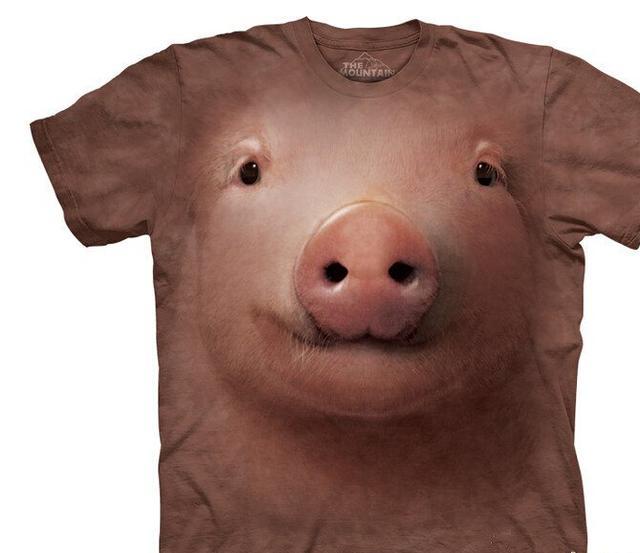 开心是你猪图片