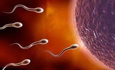 男人做哪些事,会导致精子质量一天不如一天?