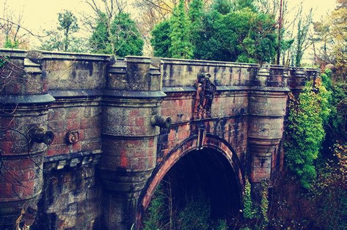 """英国小镇的""""鬼桥"""",600只狗在此跳桥自杀,如今凶手浮出水面"""