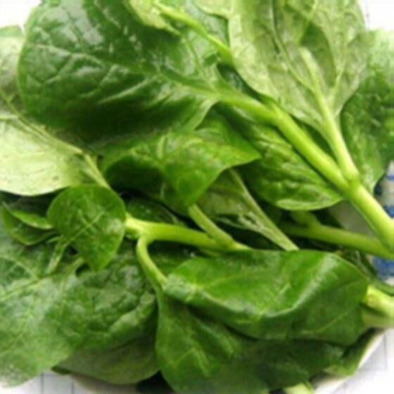 常吃木耳菜有什么好处,高血压人群能吃吗?