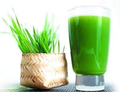 大麦青汁喝了有何功效?大麦青汁酵素呢?