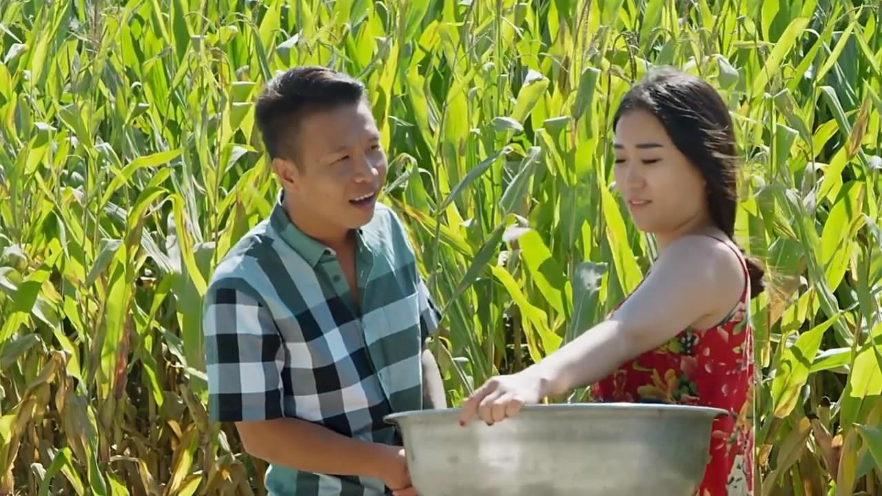 二龙湖喜剧对标赵本山乡村爱情,播出不乐观免费首日爆红